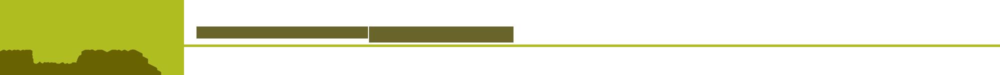 Anne Wright, PhD Logo